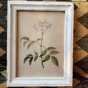Other - Brand new wildflower Print from Nell Hills Decor